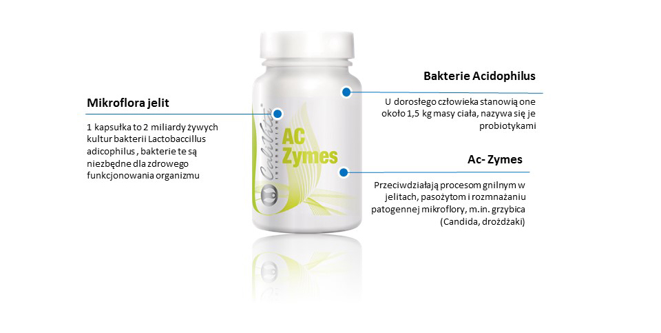 Ac- Zymes