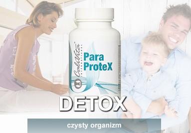 CaliVita ParaproteX
