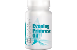 Evening PrimoseOil